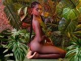 Livesex adult camshow IvyAries